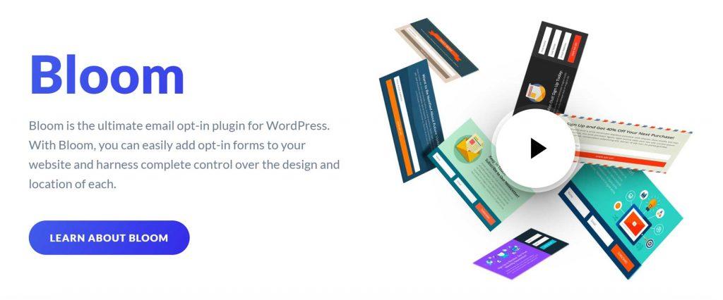 Elegant-Themes-Bloom-Plugin-Image